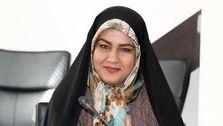 عضو اتاق بازرگانی ایران: مقصر پراید ۸۰میلیونی، مردم هستند