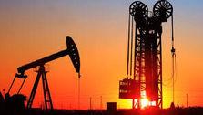 عربستان و امارات تولید نفت را افزایش می دهند