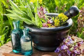 پیشتازی ایران در صادرات گیاهان دارویی