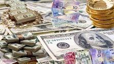 افزایش سهم یورو در ذخایر ارزی جهان