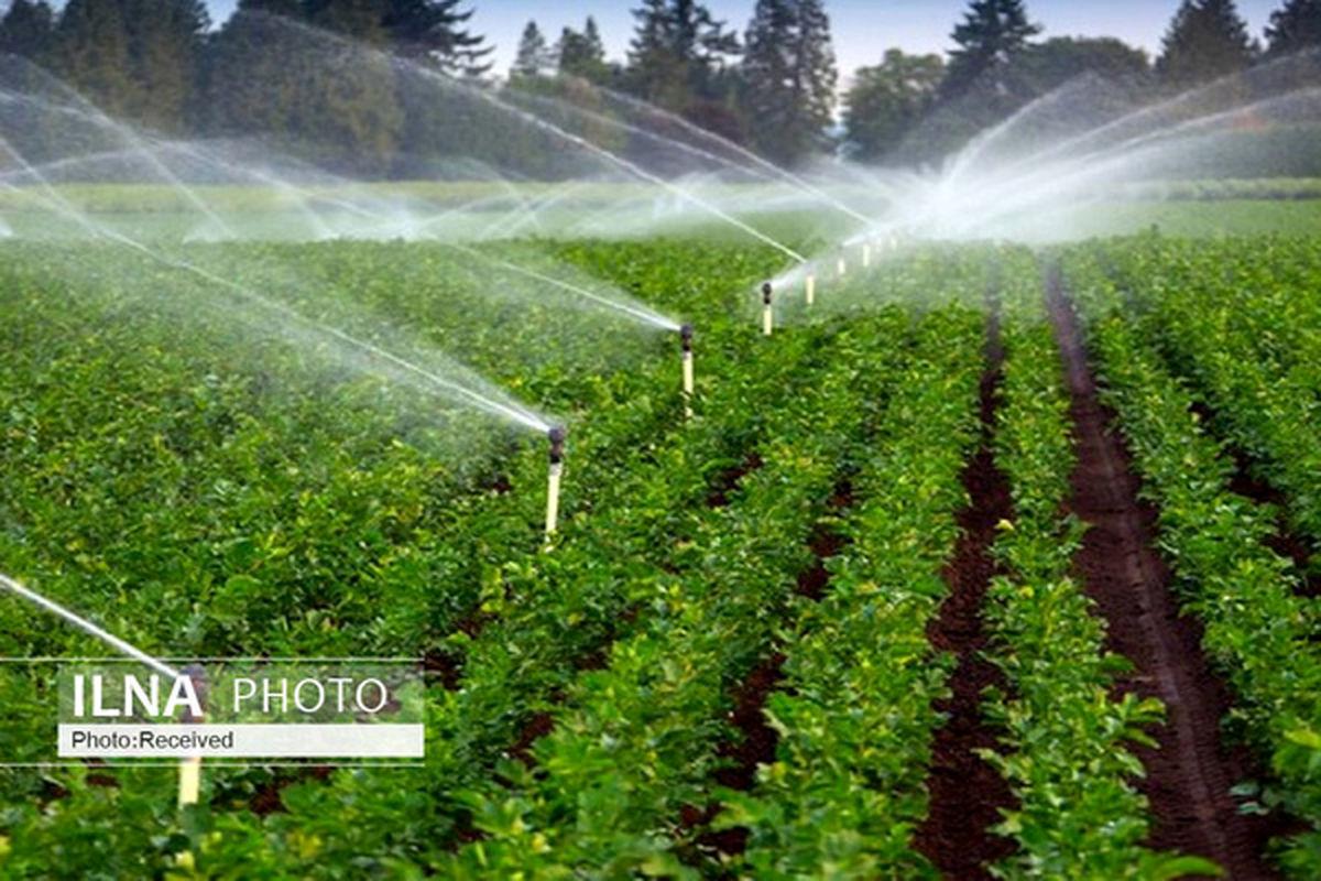 قیمت خرید تضمینی محصولات اساسی کشاورزی در سال زراعی ۱۴۰۱-۱۴۰۰ اعلام شد