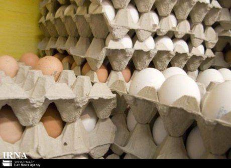 قرار نیست تخم مرغ گرانتر شود