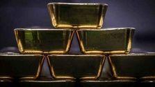 پیشبینی قیمت طلا بعد از انتخابات آمریکا / احتمالا طلا ارزان میشود