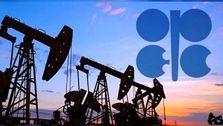 رد پای مظنونین همیشگی در سنگ اندازی به توافق نفتی اوپک