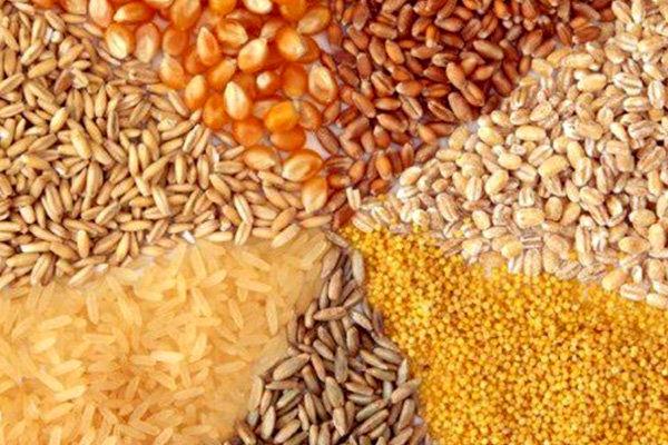 قیمت جدید خوراک دام و طیور اعلام شد