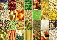 متوسط قیمت و تورم کالاهای خوراکی