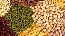 حبوبات؛ صدرنشین افزایش قیمت در خرداد