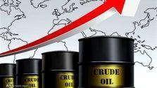 قیمت جهانی نفت امروز ۱۴۰۰/۰۱/۱۰| افزایش قیمت نفت در آستانه نشست اوپک پلاس