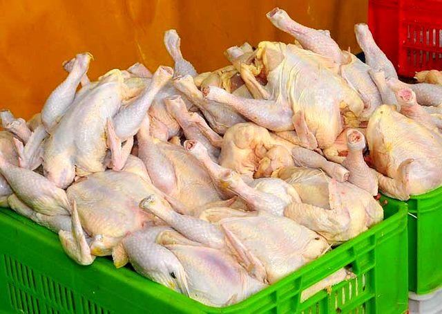 افزایش ۸۲ درصدی قیمت مرغ نسبت به پارسال