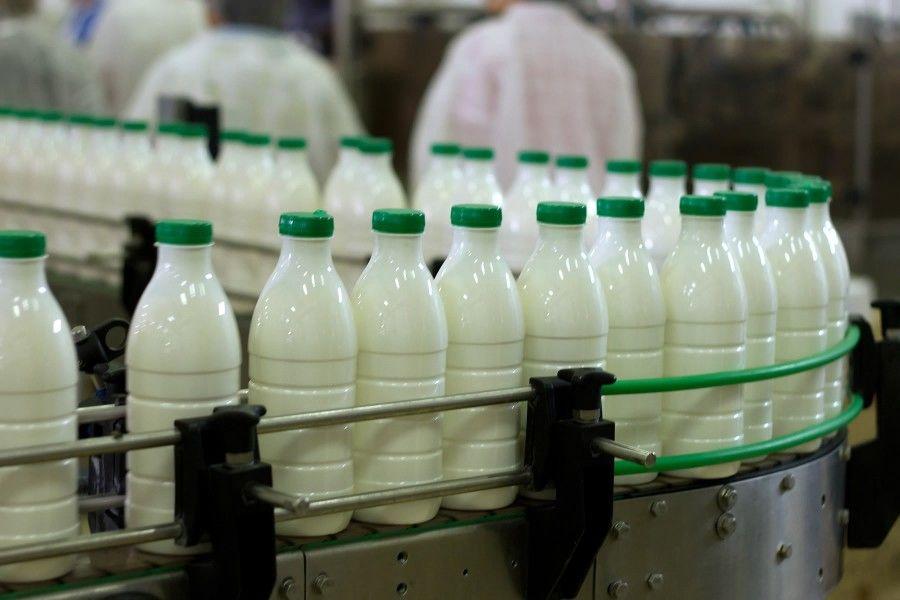 شیر ارزان شد؟