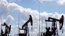 بدبینی بازار مانع ادامه صعود نفت شد