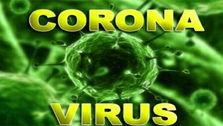 صادرات اقلام بهداشتی مقابله با ویروس کرونا ممنوع شد