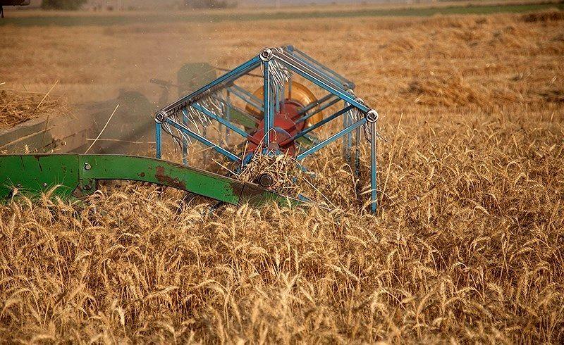 اعتراض کشاورزان به نرخ خرید تضمینی گندم؛ قیمت اعلام شده جوابگوی هزینههای تولید نیست