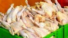 قیمت مرغ تا هفته آینده متعادل میشود