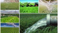 گرانی کود، سموم و ادوات کشاورزی کمر کشاورزان را شکسته/ قیمت تراکتور ۷۰ درصد افزایش یافته