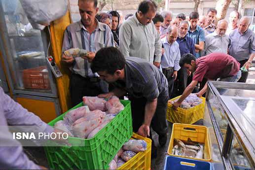 توزیع ۵۰۰ تن مرغ گرم و منجمد در تهران
