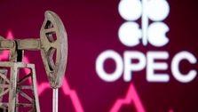 احتمال برگزاری جلسه فوق العاده اوپک در صورت افت بیشتر قیمت نفت