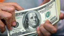 ارز صادراتی به بانکها و صرافیهای مجاز عرضه شود