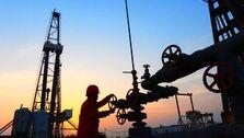 واردات نفت ژاپنیها از ایران به حالت تعلیق درآمد